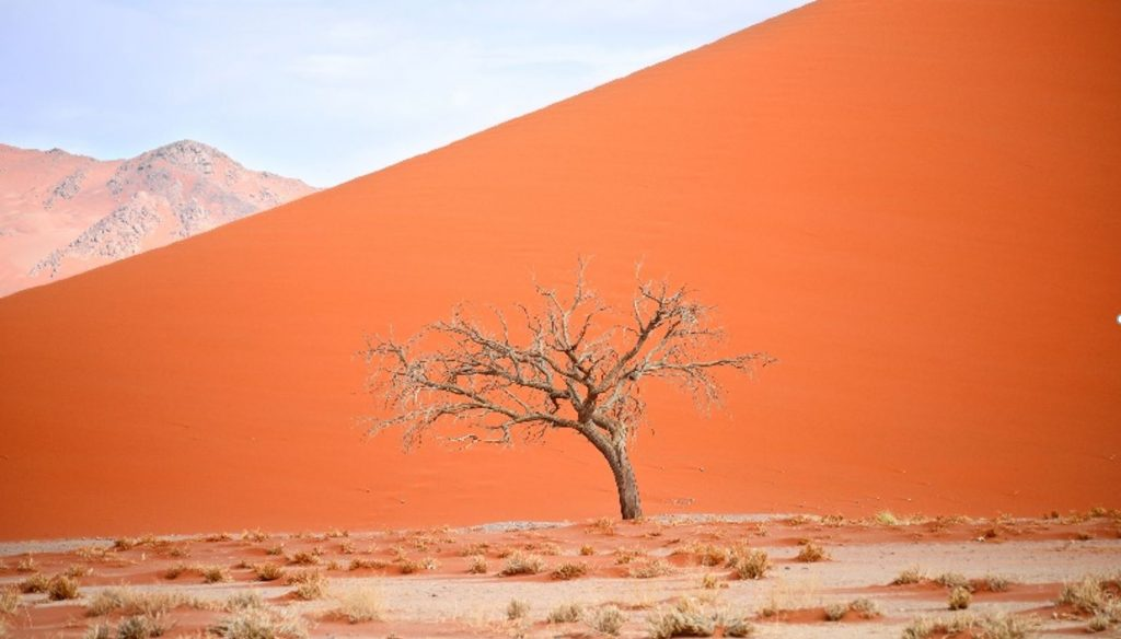 1 1024x584 - Top Places to visit in Namibia